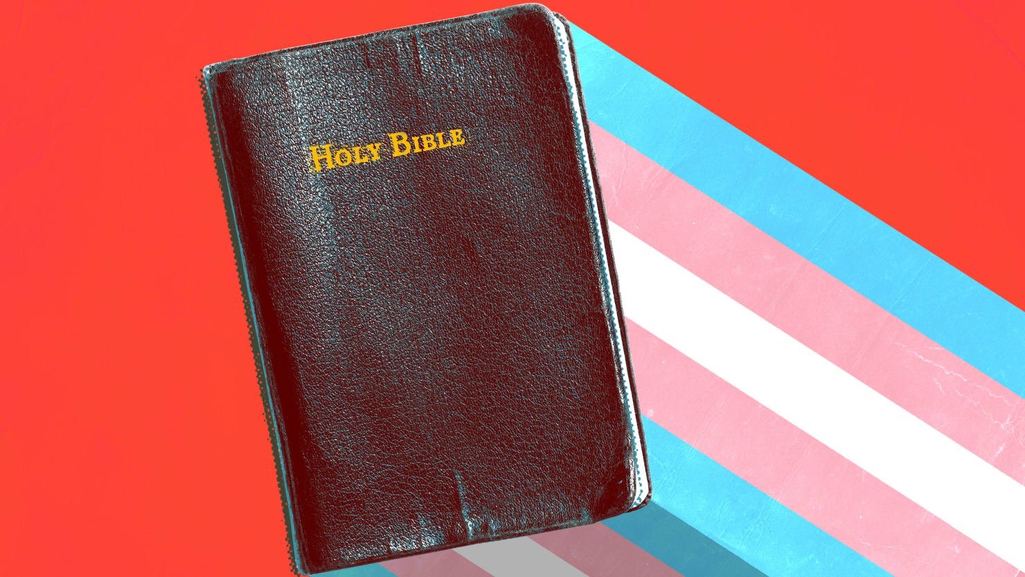 Call for Submissions: The Bible: Transgender and Genderqueer Perspectives